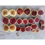 Figo Super Kit Com 10 Variedades - Sementes Frutas P/ Mudas