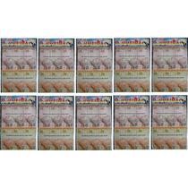 10x Dinheiro Dinheirinho-dinheirão C/35 Cédulas(13x6cm) + Nf
