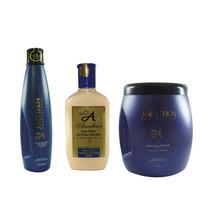 Aneethum Linha Profissional (másc+silicone+ Shampoo)