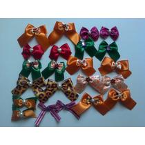 Frete Gratis- Kit 300 Lindos Lacinhos Pet O+vendido +bonito!