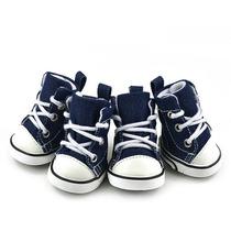 Sapato Tênis Para Cachorro Tipo All Star Jeans Tm 04 G L