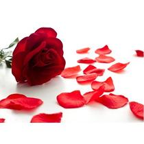 2.000 Pétalas De Rosas Artificiais - Flores Chuva Noivas Mil