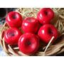 20 Sabonetes Artesanais Mini Maçã Vermelha 10g