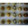 30 Lembrancinhas* Madagascar* Em Biscuit* Imãs