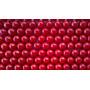 Baleiros 600 Chicletes Importado 59,99 6 Cores E 6 Sabores