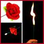 Tocha Em Rosa Flor + Varinha +manual = Mágica Pronta Entrega