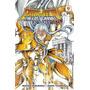 Mangá - Cavaleiros Do Zodíaco Lost Canvas Gaiden Nº 09