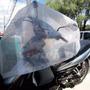 Lona Transparente Melhor Preço M² Cristal Cobertura Palco
