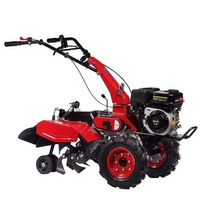 Motocultivador E Micro Trator A Gasolina 7,0 Hp 212 Cc Toyam