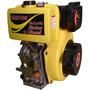 Motor À Diesel - 10 Hp 418 Cilindradas Partida Manual