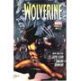 Gibi Wolverine Nº 41