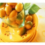 20 Sementes De Laranginha Kinkan - Margarita+manual