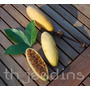 Sementes Maracuja Banana - Passiflora Mollissima Jardim