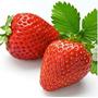 50 Sementes De Morango Vermelho Gigante-super Doce Importada