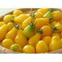 50 Sementes Tomate Pera Amarelo Para Petisco Frete Grátis