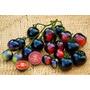50 Sementes De Tomate Índigo Rose Raro +manual