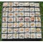 20 Sementes Lithops Cactos Plantas Pedra Mix Para Mudas