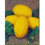 Melão Napolitano Amarelo Fruta Sementes Para Mudas