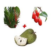 Sementes Palmeira Laka + Goji Berry + Graviola Gigante