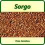 700 Sementes De Sorgo + Frete Gratis + Brindes