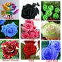 12 Sementes Rosas 24 Cores Mix Rara Importadas Da Ásia Flor