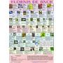 Florais De Bach Lindo Poster Mapa Dos 38 Remédios Indicações
