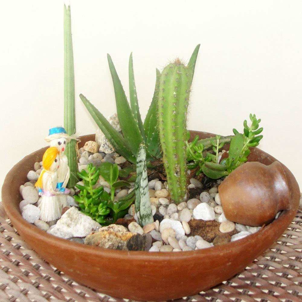 mini jardim cactos suculentas : mini jardim cactos suculentas:Mini Jardim – R$ 160,00 no MercadoLivre