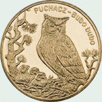Polônia - Moeda Comemorativa 2zl 2005 Eagle Owl Fc