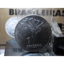 Moeda 1 Cruzeiro 1972 Espelhada Flor De Cunho Muito Rara