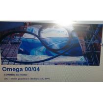 Correia Poly V Motor Omega Australiano 99/04 Original Gm