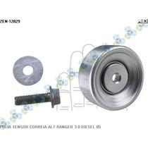 Polia Tensor Correia Do Alternador Ecosport 2.0 16v - Zen