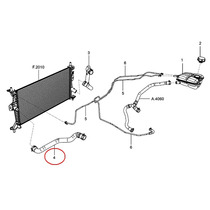 Mangueira Inferior Radiador Focus Powershift 1.6 2013/... *