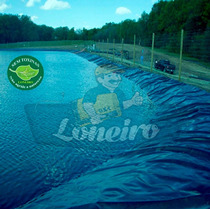 Lona 5x3 M Para Lago Artificial Ornamental Manta Pppe Az/cz