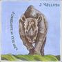Cd J. Velloso Aboio Para Um Rinoceronte 1ª Ed. 2005 Lacrado