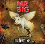 Mr Big What If Novo