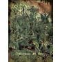 Ocultan - Ceremony Of Hate (dvd Lacrado - Novo)