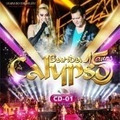 Cd - Banda Calypso - 15 Anos - Vol 1 Ou Vol 2