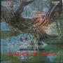 Lp Orquestra Romanticos De Cuba - O Melhor Do - Vinil Raro