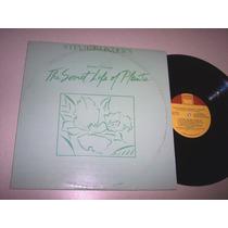Stevie Wonder Journey Through Secre Lp Disco Vinil Importado