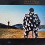 Lp - Pink Floyd - Delicate Sound Of Thunder Vinil Raro Duplo