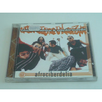 Chico Science & Nação Zumbi, Afrociberdelia