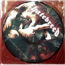 Lp Hatebreed - The Divinity Of Purpose - Picture Importado