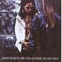 Cd Lenny Kravitz - Are You Gonna Go My Way (usado/otimo)