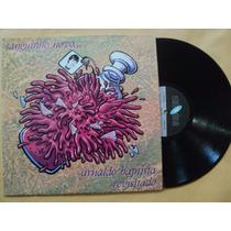 Arnaldo Baptista/ Sanguinho Novo- Lp C/ Vários Artistas 1989