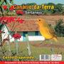 Cd -de Canário-da- Terra * Sertanejo * Canto Disparado