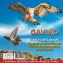 Cd Canto Pássaros - Canto De Gaviões - Afugenta Pomba ,etc