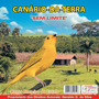 Cd Canto -de Pássaros Canário Terra Canto Mateiro + Estalos