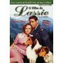 O Filho De Lassie Dvd Raro Lacrado Novo Original !!