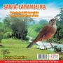 Cd Canto Pássaros Sabiá Laranjeira+som -das Águas Do Riacho
