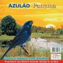 Cd Canto Pássaros Azulão Panema Canto Clássico Com Surdina